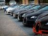 13 Bugatti Veyrons in Pebble Beach