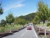 2013-country-farm-tokyo-german-village-46