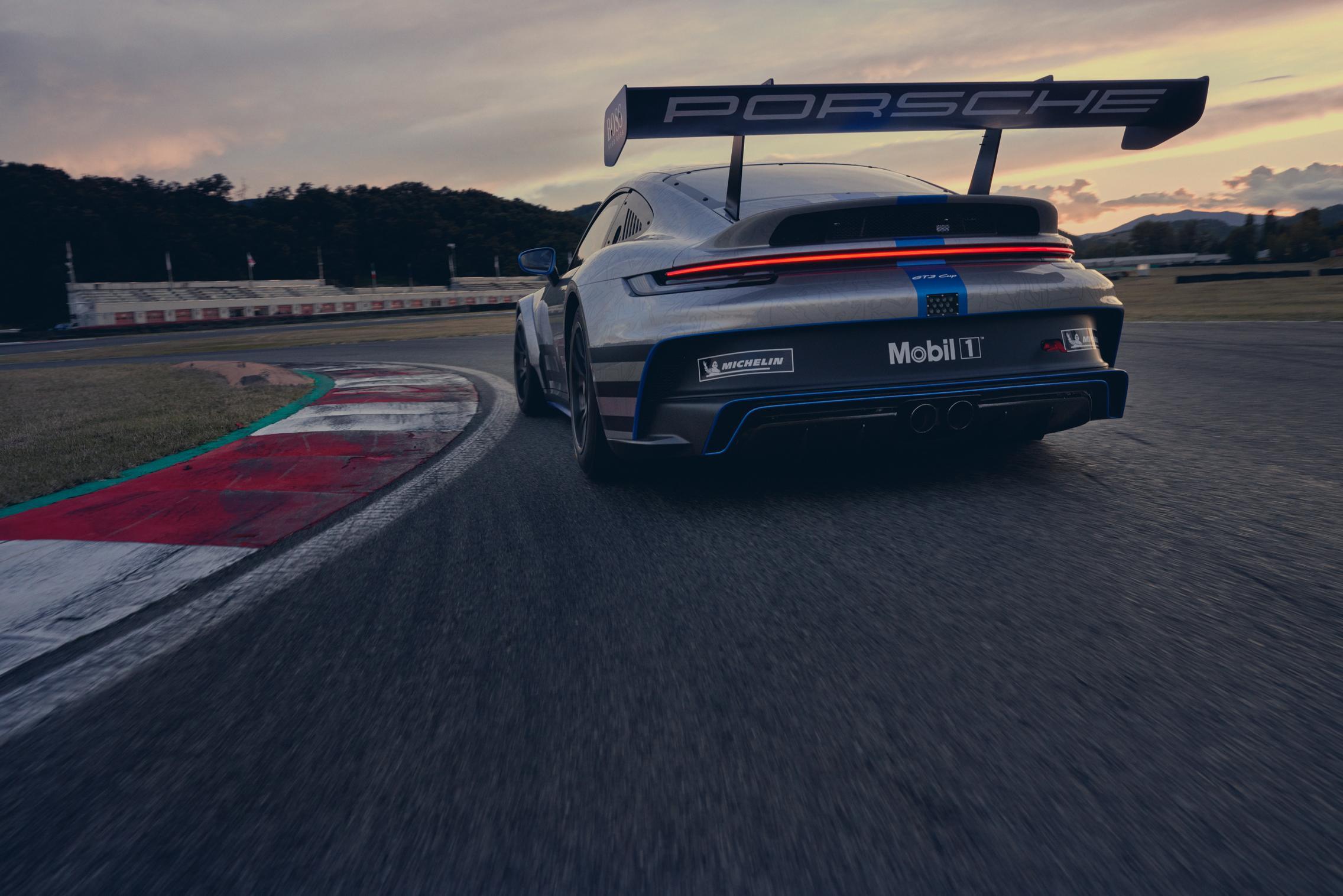 Big Rear Wing Porsche