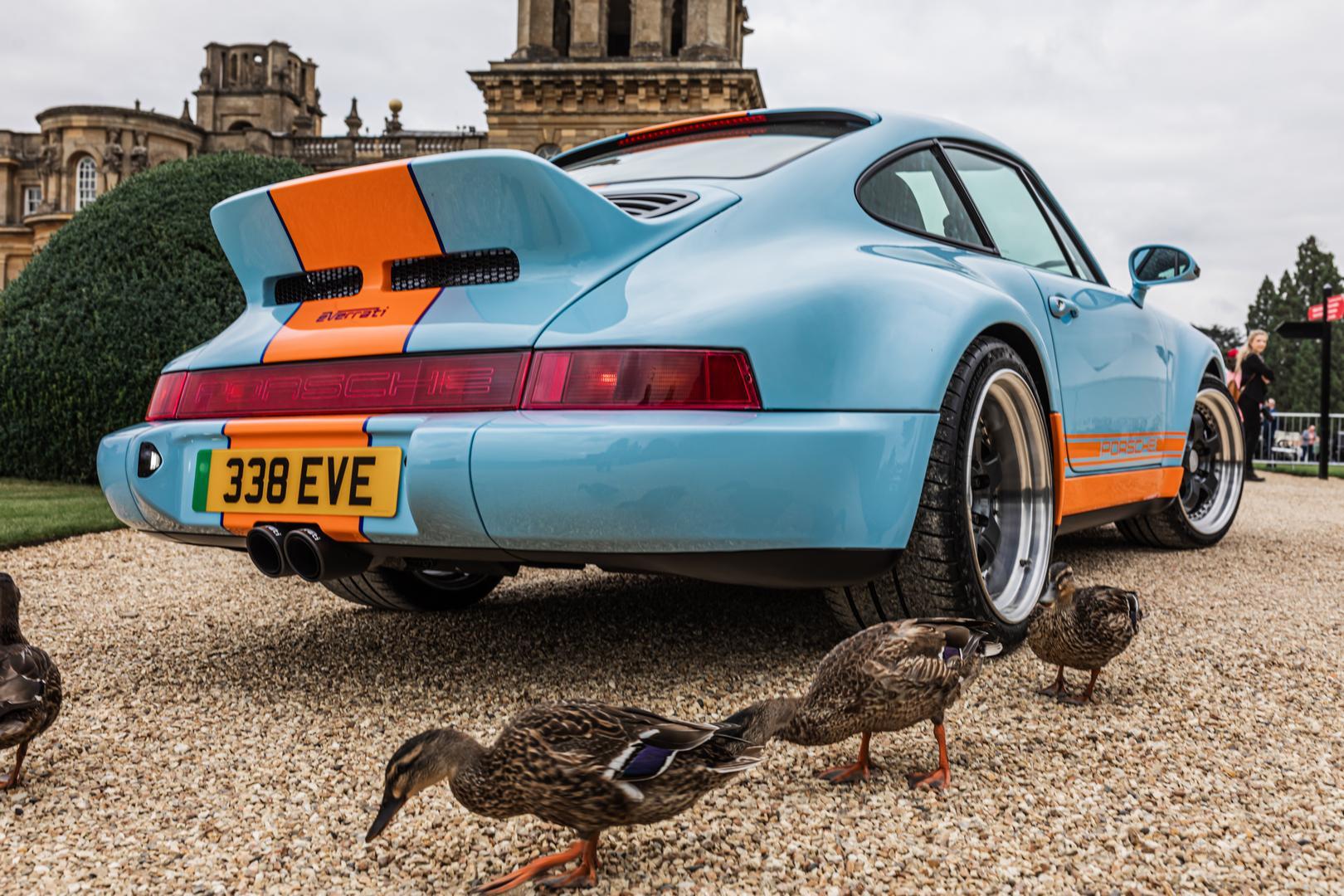 Porsche and Ducks